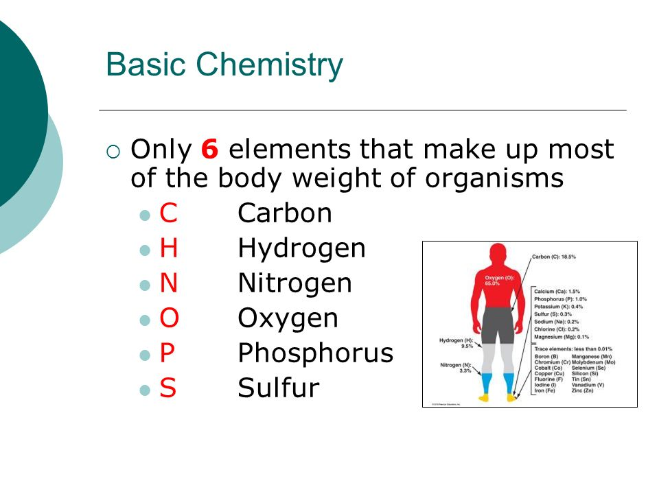 Basic Chemistry Only 6 elements that make up most of the body weight of organisms. C Carbon. H Hydrogen.