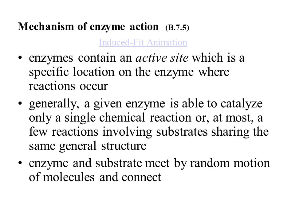 Mechanism of enzyme action (B.7.5)