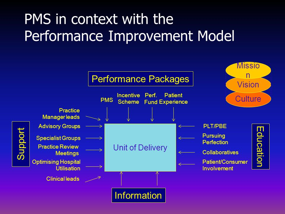 PMS in context with the Performance Improvement Model