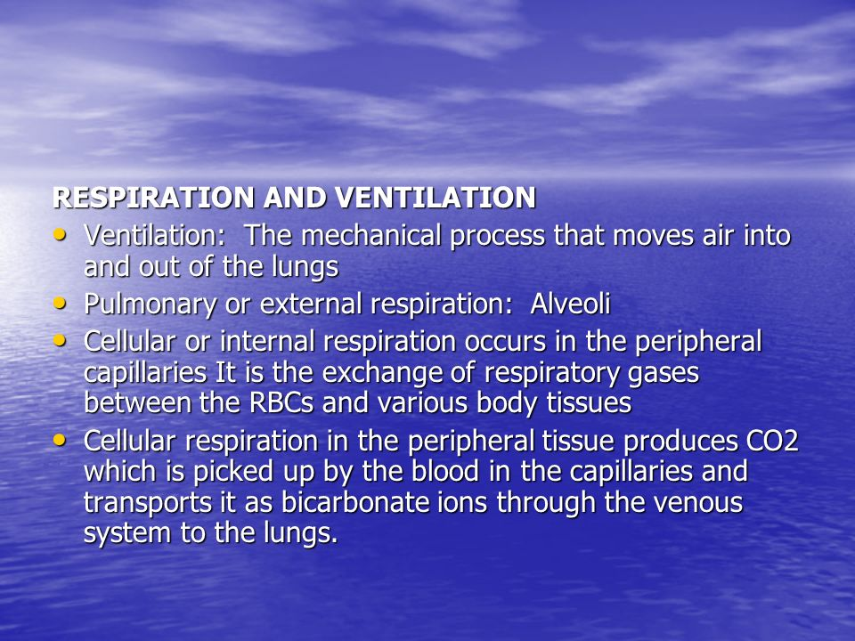 RESPIRATION AND VENTILATION