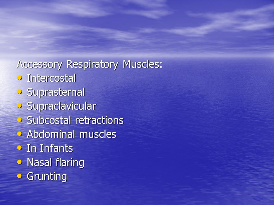 Accessory Respiratory Muscles: