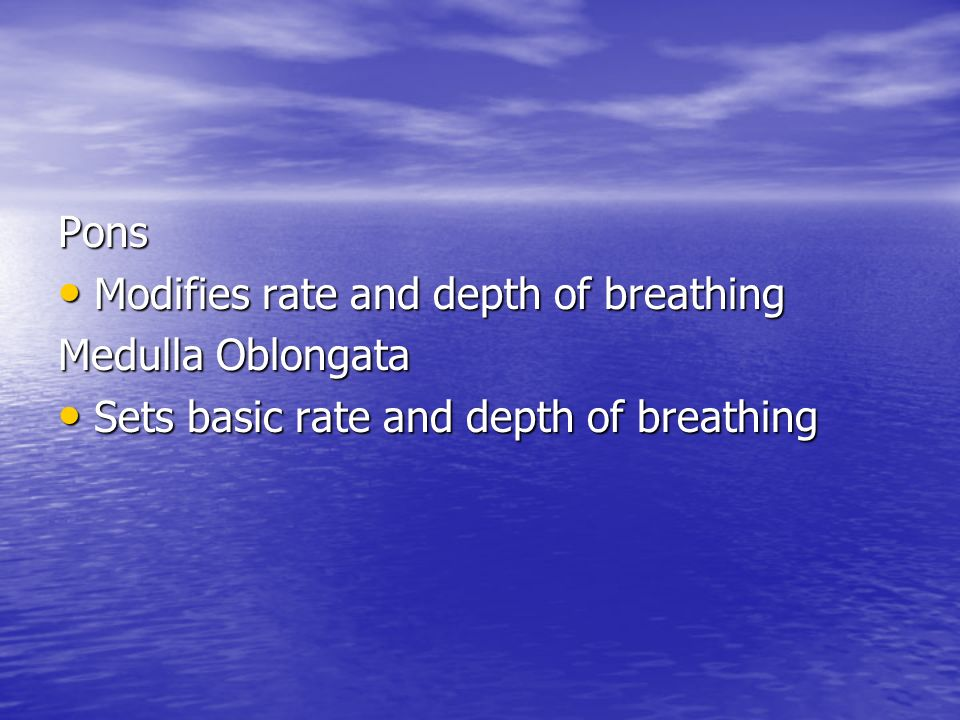 Pons Modifies rate and depth of breathing Medulla Oblongata Sets basic rate and depth of breathing