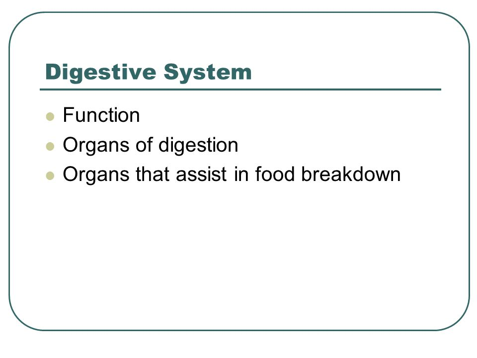Digestive System Function Organs of digestion