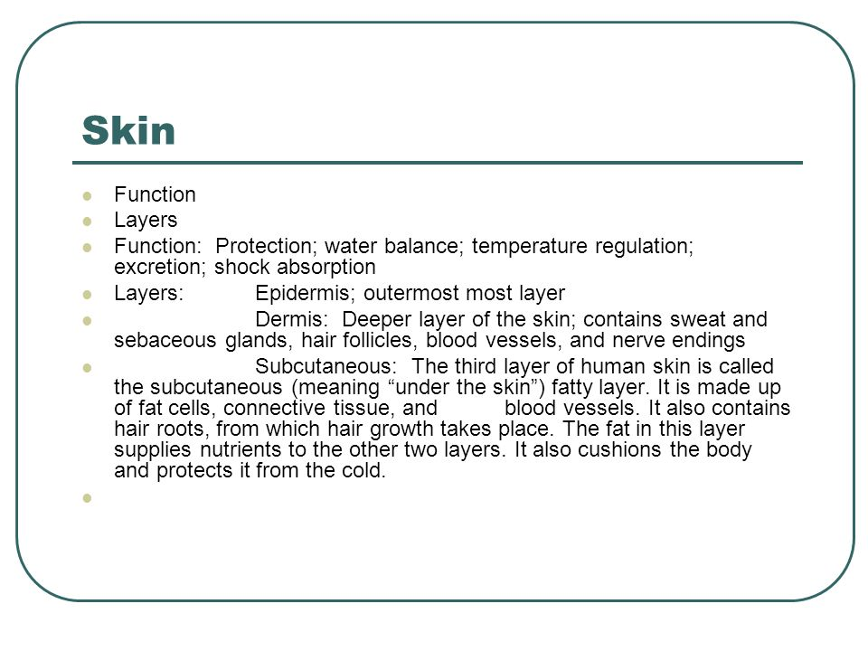 Skin Function. Layers. Function: Protection; water balance; temperature regulation; excretion; shock absorption.