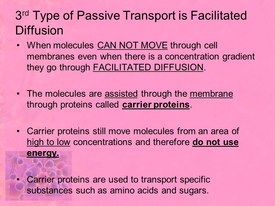 3rd Type of Passive Transport is Facilitated Diffusion
