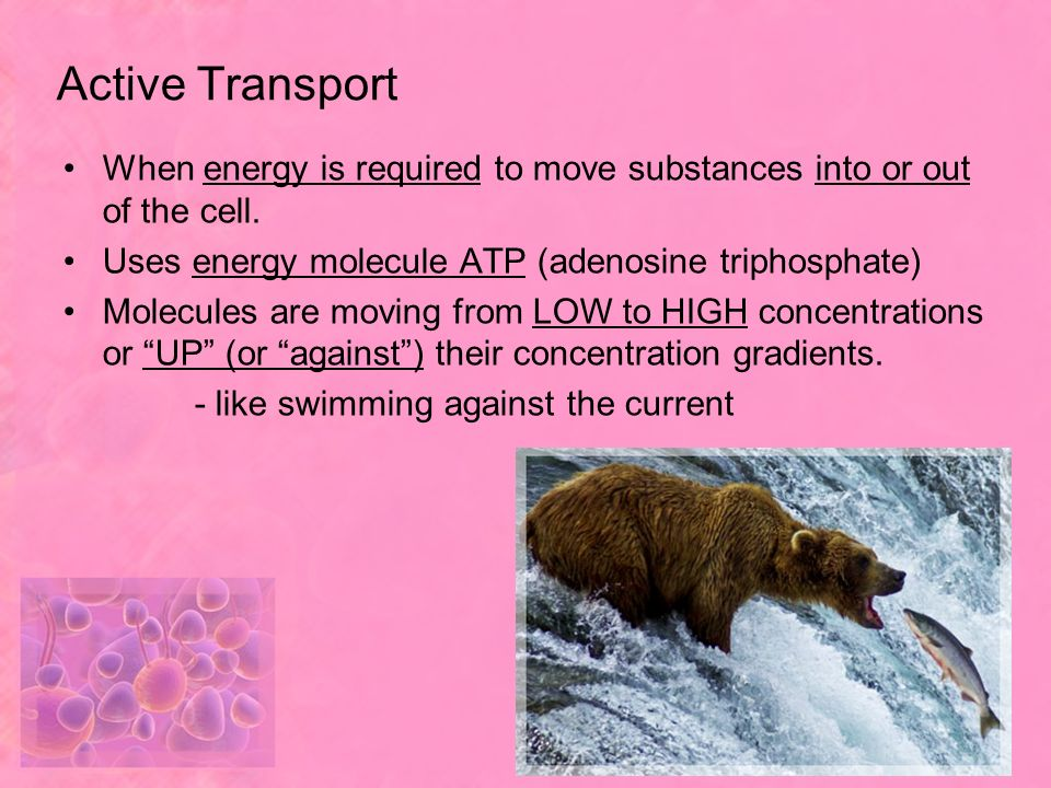 Active Transport When energy is required to move substances into or out of the cell. Uses energy molecule ATP (adenosine triphosphate)