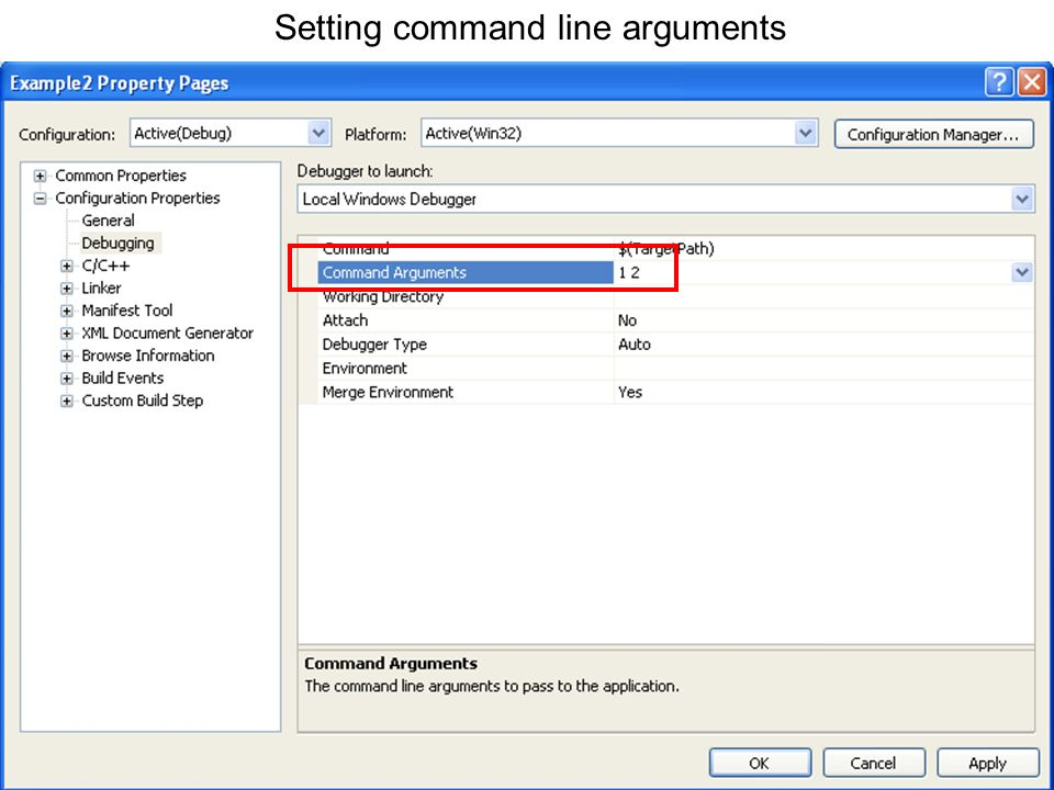 Setting command line arguments