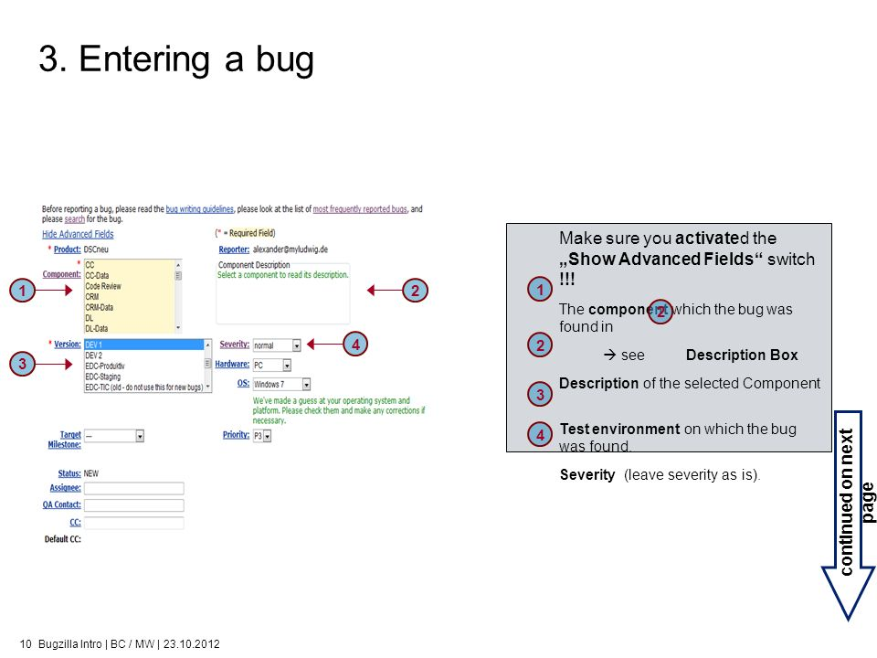 3. Entering a bug continued on next page