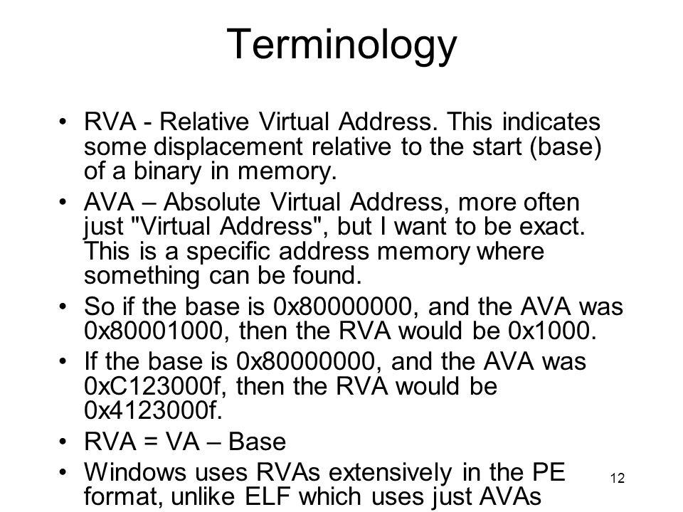 Terminology RVA - Relative Virtual Address. This indicates some displacement relative to the start (base) of a binary in memory.