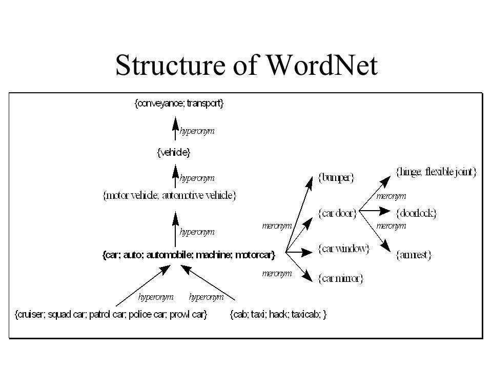 Structure of WordNet