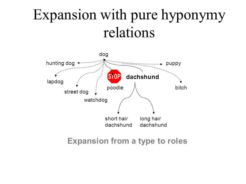 Expansion with pure hyponymy relations