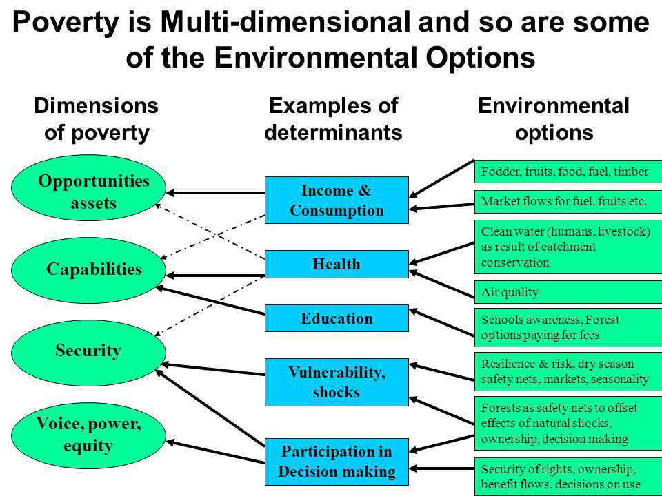 Poverty is Multi-dimensional and so are some of the Environmental Options