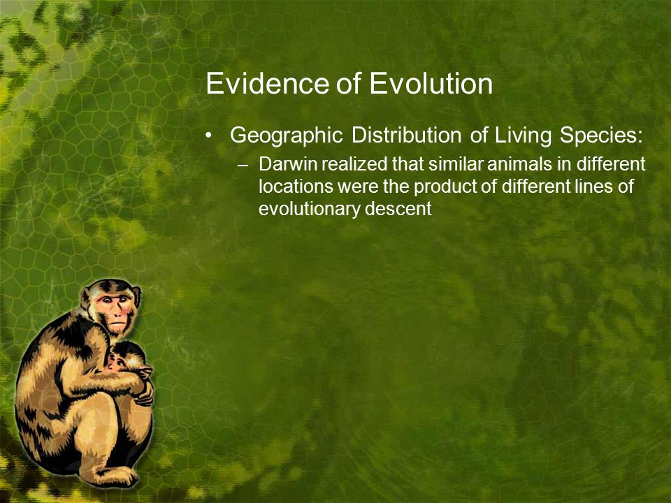Evidence of Evolution Geographic Distribution of Living Species: