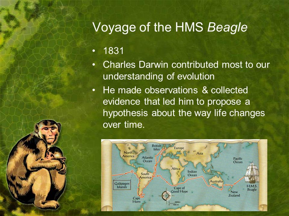 Voyage of the HMS Beagle