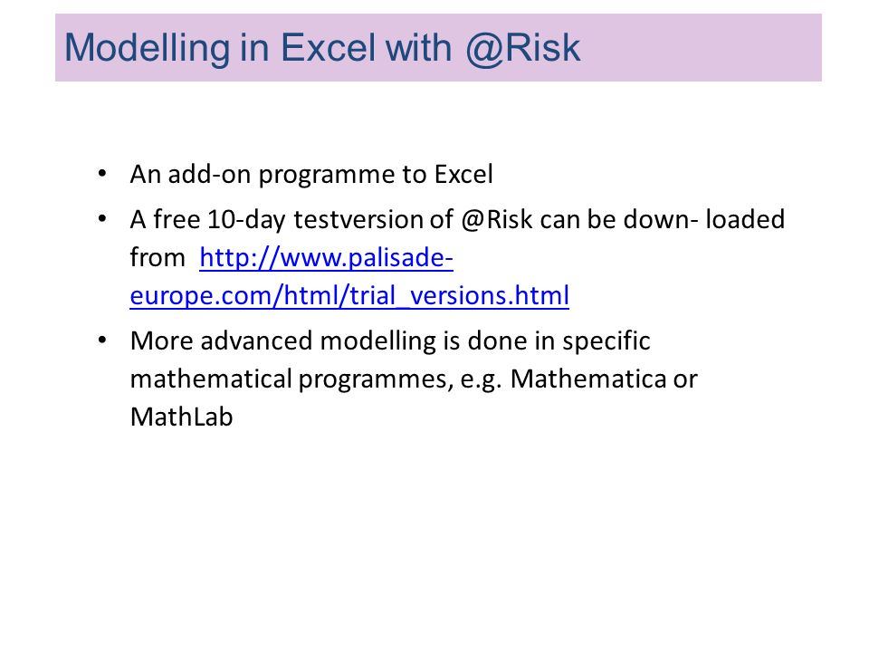 Modelling in Excel with @Risk