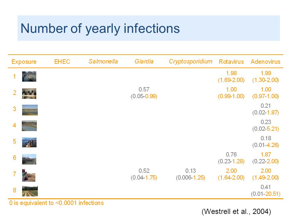 Number of yearly infections