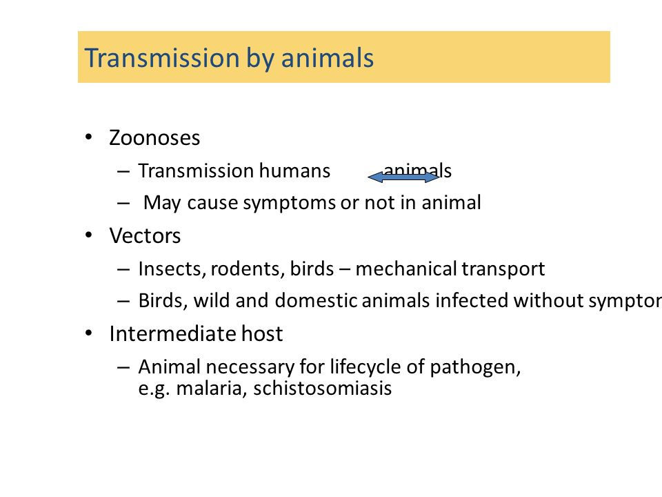 Transmission by animals