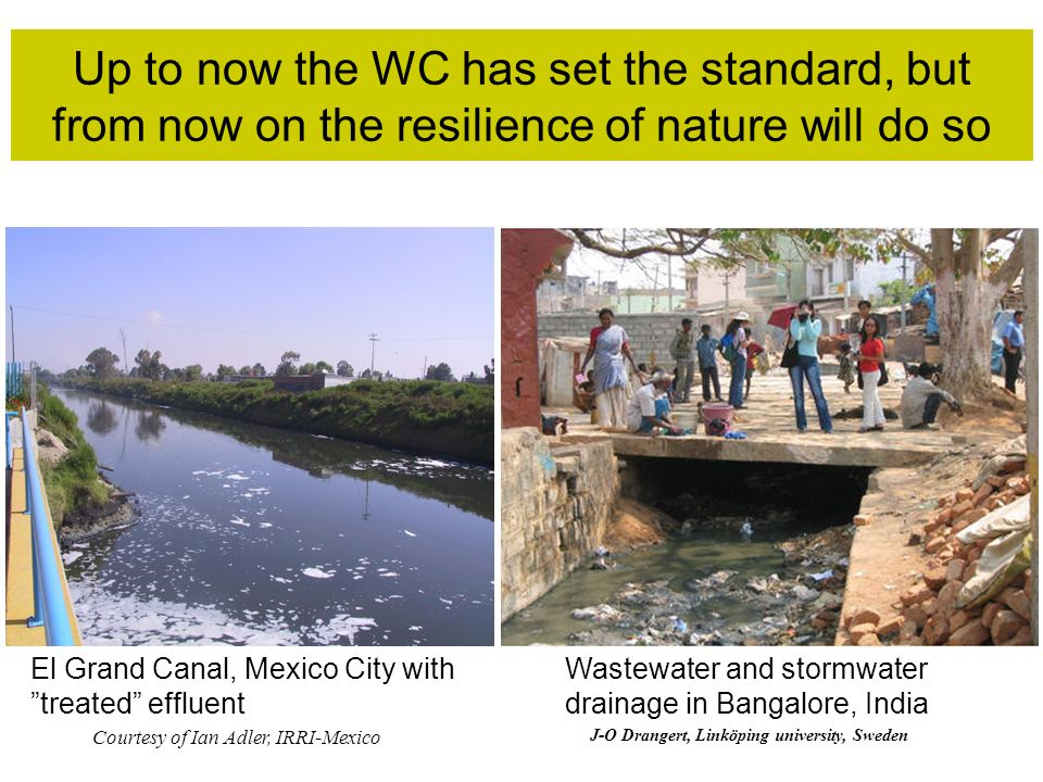 Up to now the WC has set the standard, but from now on the resilience of nature will do so