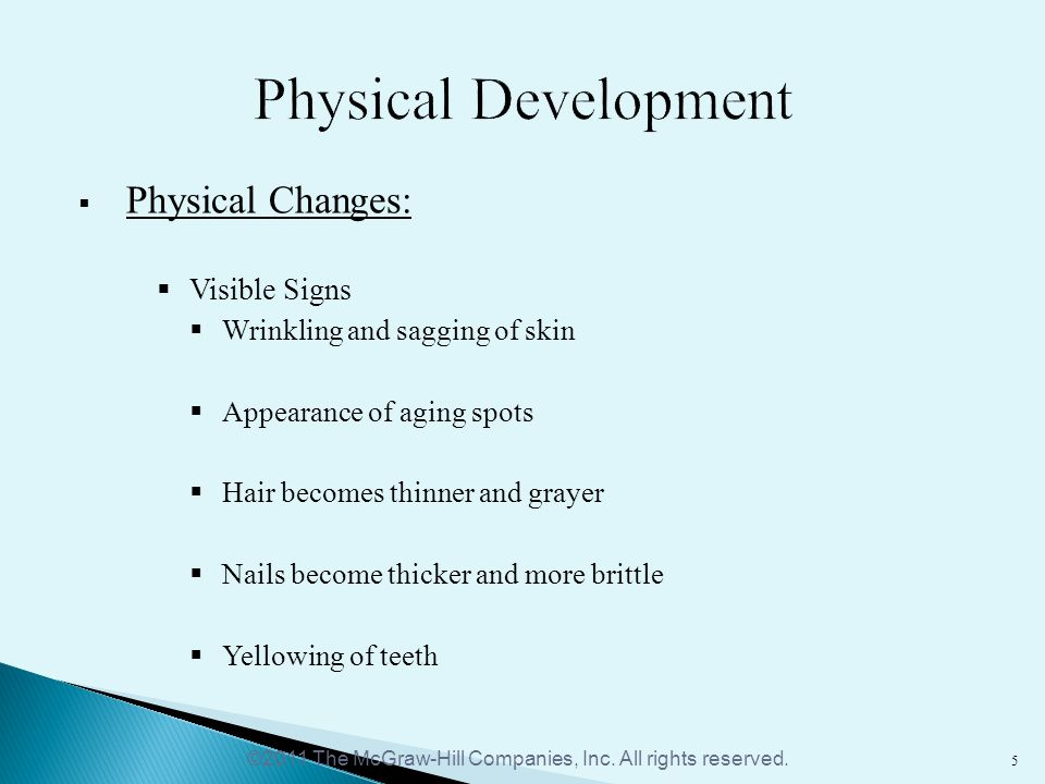 physical development of middle adulthood