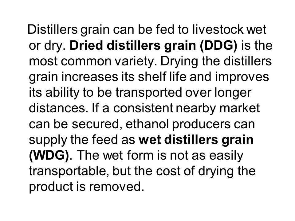Distillers grain can be fed to livestock wet or dry