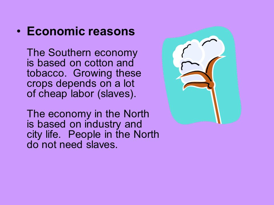 Economic reasons The Southern economy is based on cotton and tobacco