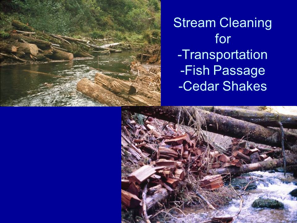 Stream Cleaning for -Transportation -Fish Passage -Cedar Shakes