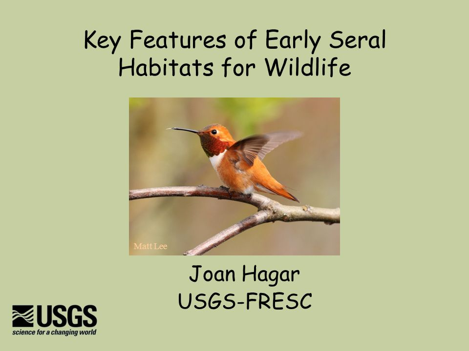 Key Features of Early Seral Habitats for Wildlife