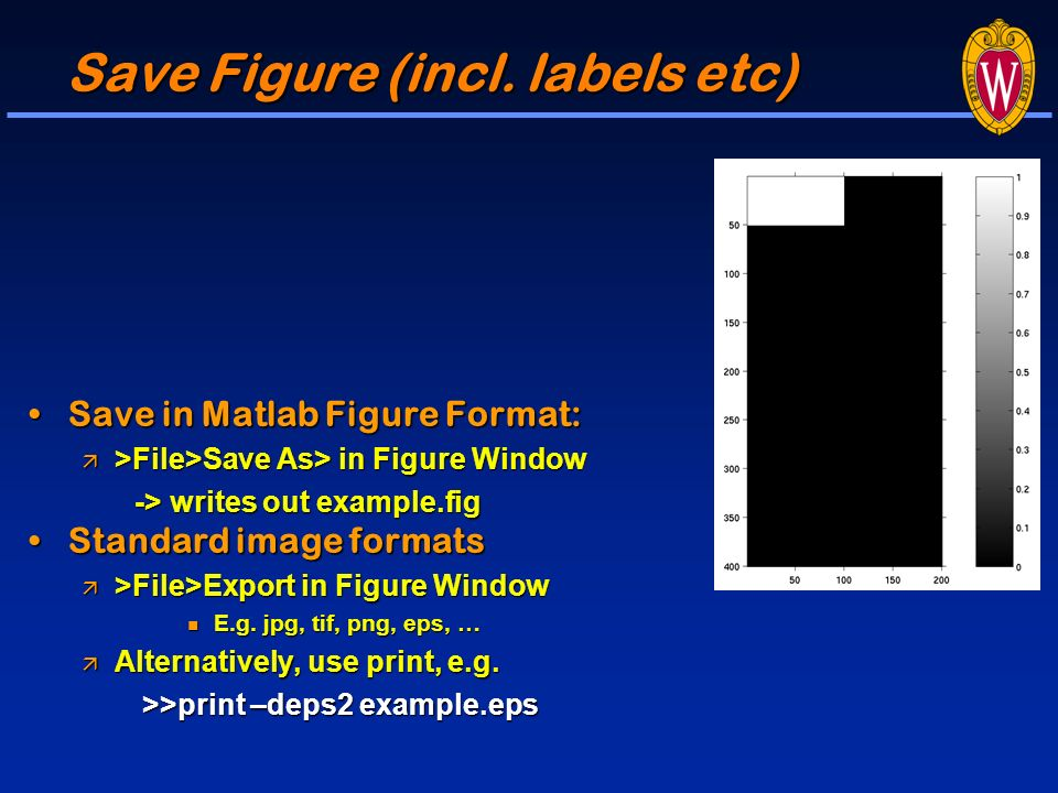 Introduction to Image Processing with MATLAB Medical Imaging