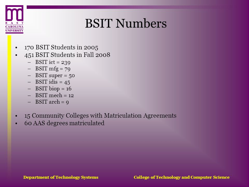 BSIT Numbers 170 BSIT Students in 2005 451 BSIT Students in Fall 2008