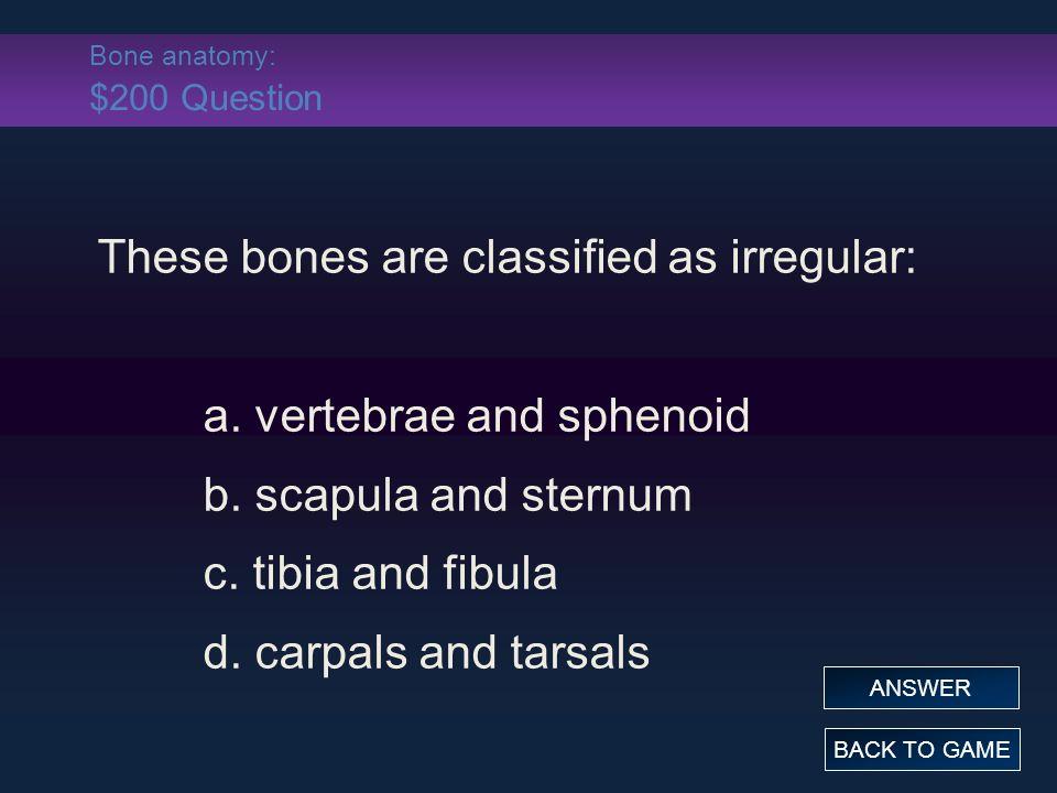 Skeletal System- Bones and Bone Tissue - ppt download