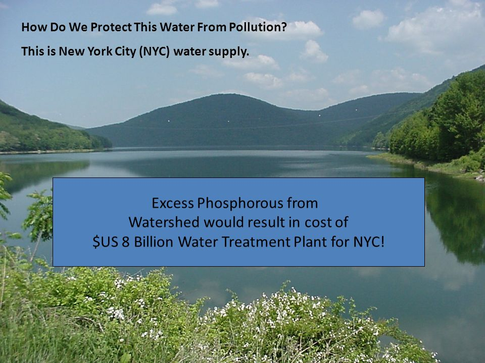 Excess Phosphorous from Watershed would result in cost of