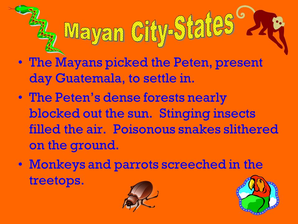 Mayan City-States The Mayans picked the Peten, present day Guatemala, to settle in.