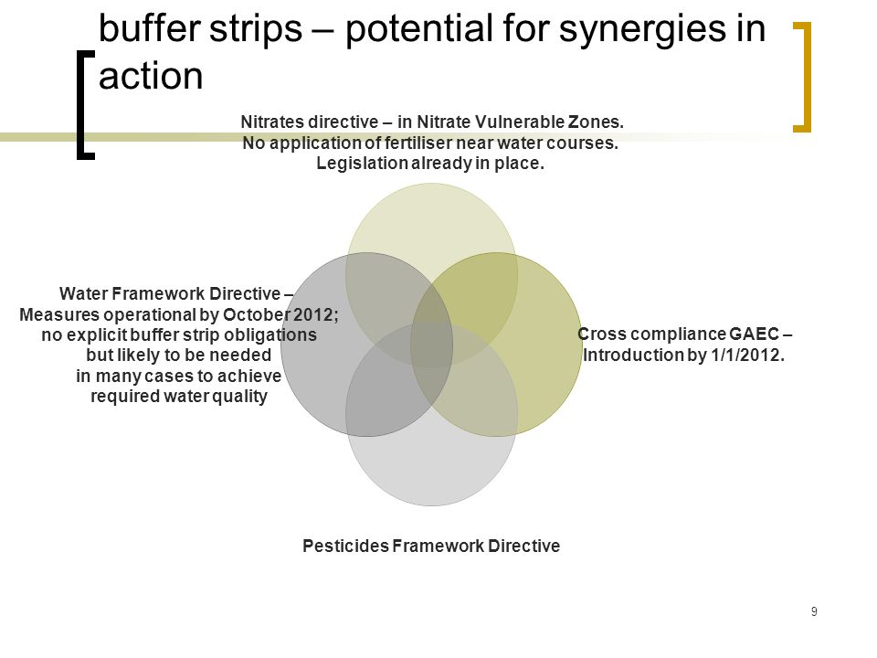 buffer strips – potential for synergies in action