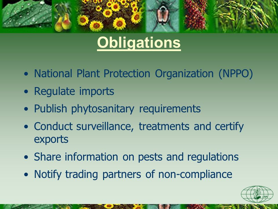 Obligations National Plant Protection Organization (NPPO)