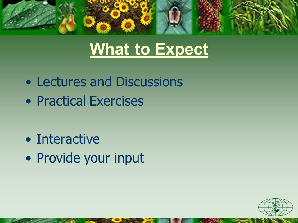 What to Expect Lectures and Discussions Practical Exercises