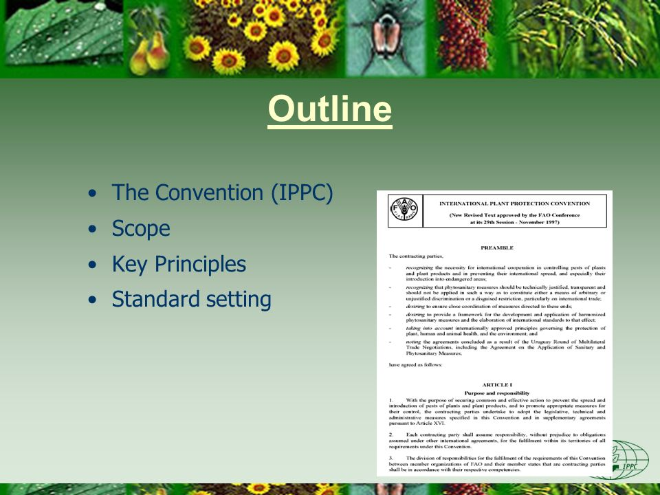 Outline The Convention (IPPC) Scope Key Principles Standard setting