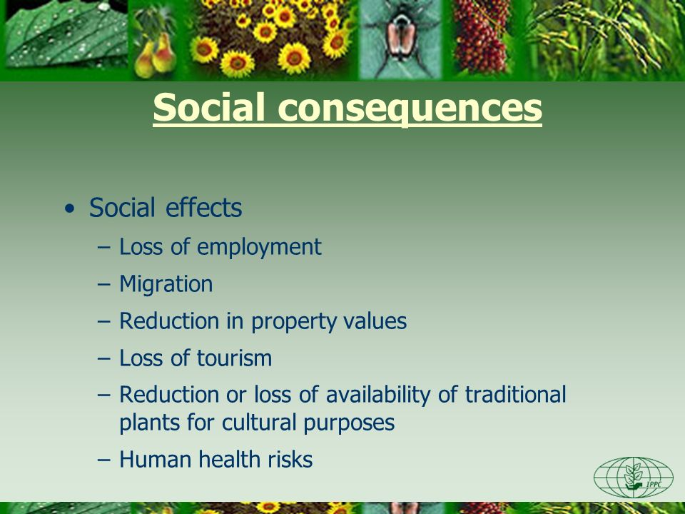 Social consequences Social effects Loss of employment Migration