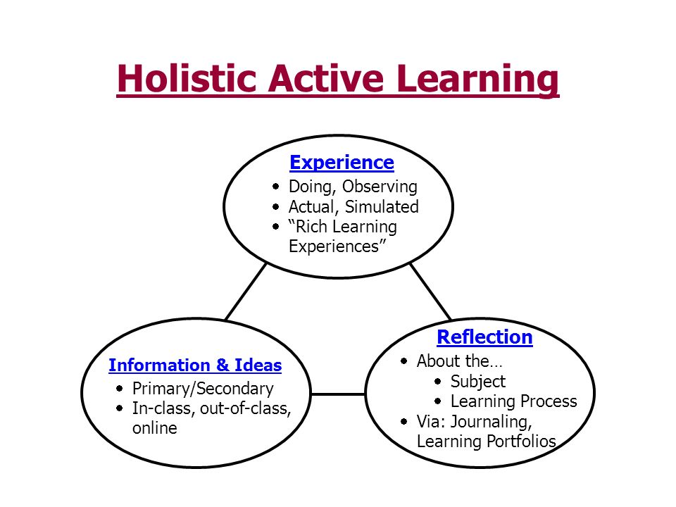 Holistic Active Learning