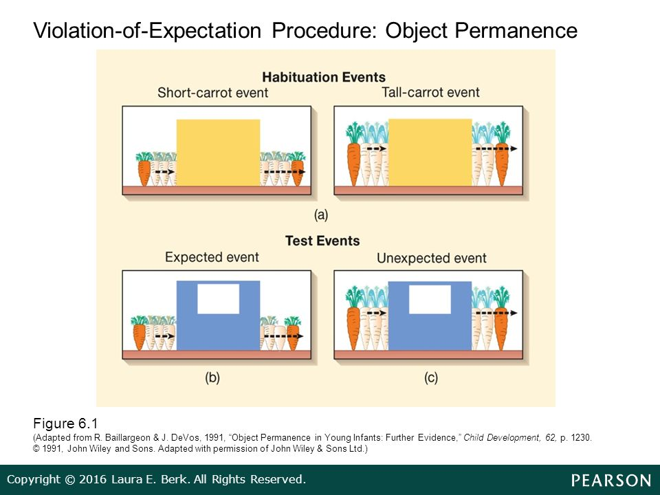baillargeon object permanence
