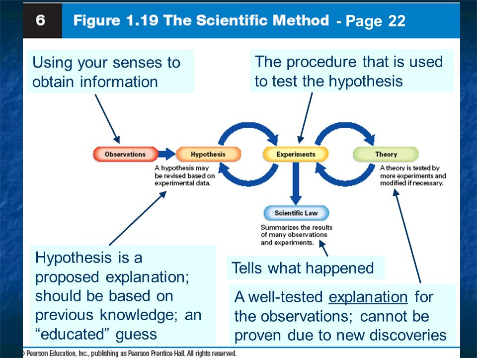 - Page 22 Using your senses to obtain information. The procedure that is used to test the hypothesis.
