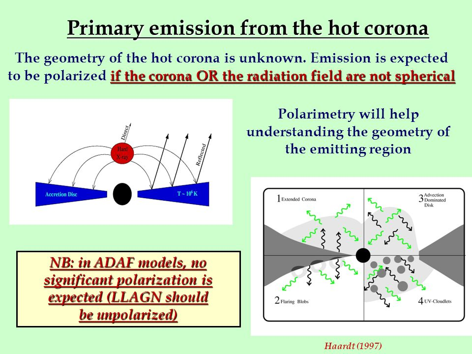 Primary emission from the hot corona