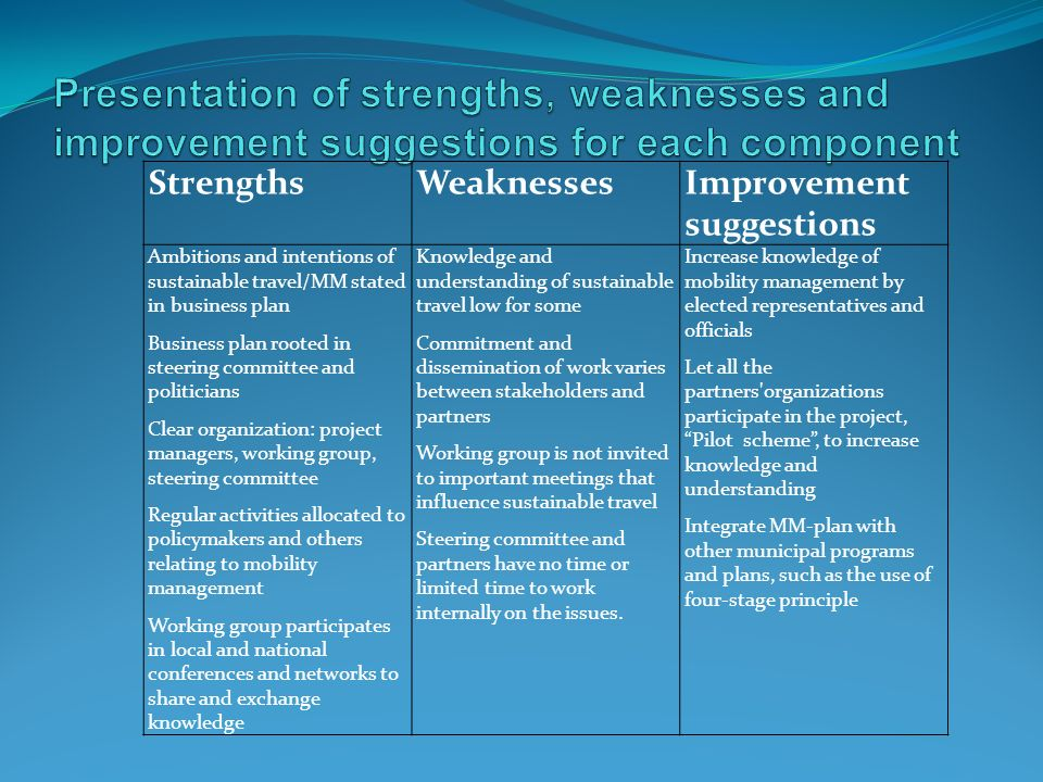Presentation of strengths, weaknesses and improvement suggestions for each component