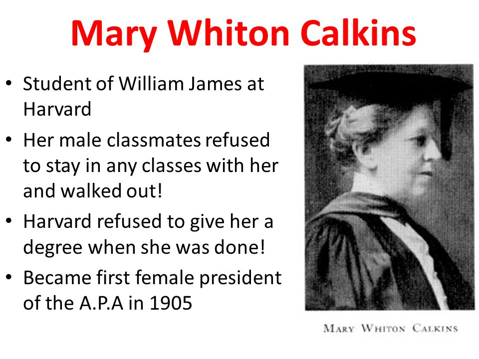 who was mary calkins