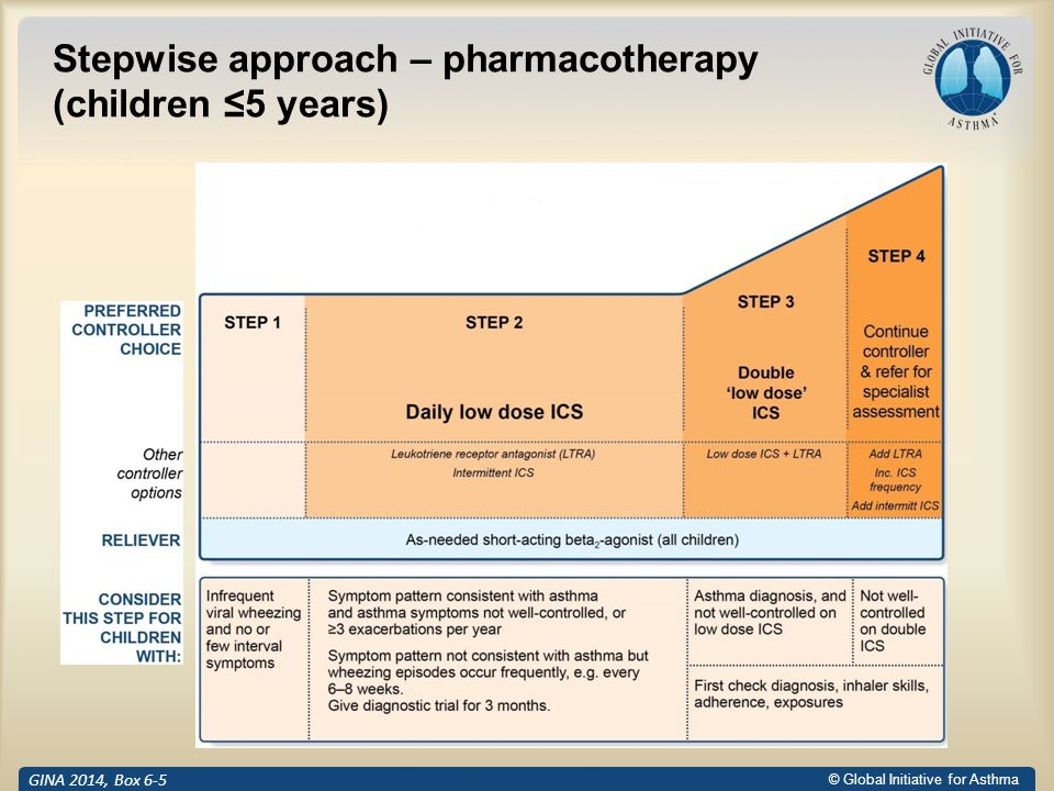 Update Asthma Guideline Ppt Download