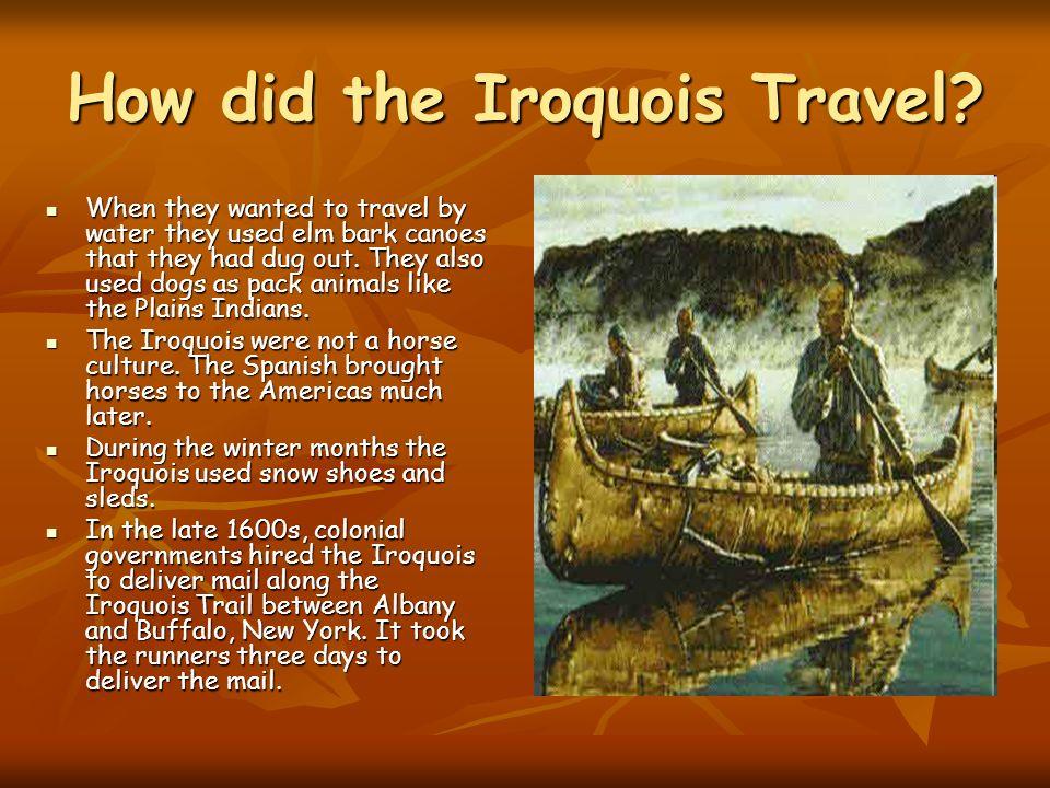 iroquois culture