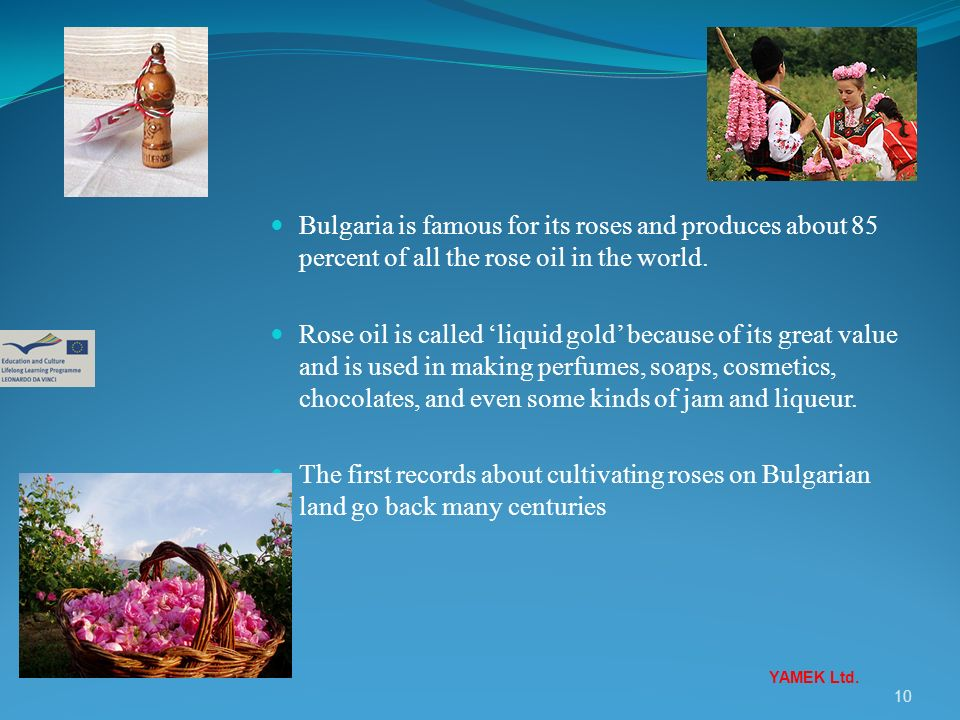 Bulgaria is famous for its roses and produces about 85 percent of all the rose oil in the world.