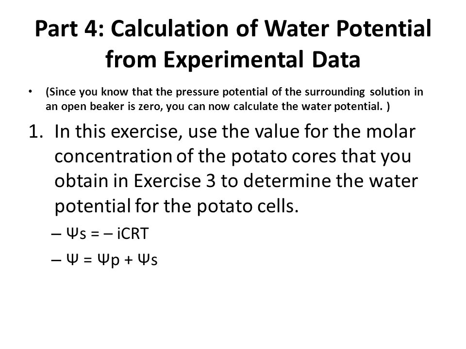 what is the water potential of a potato