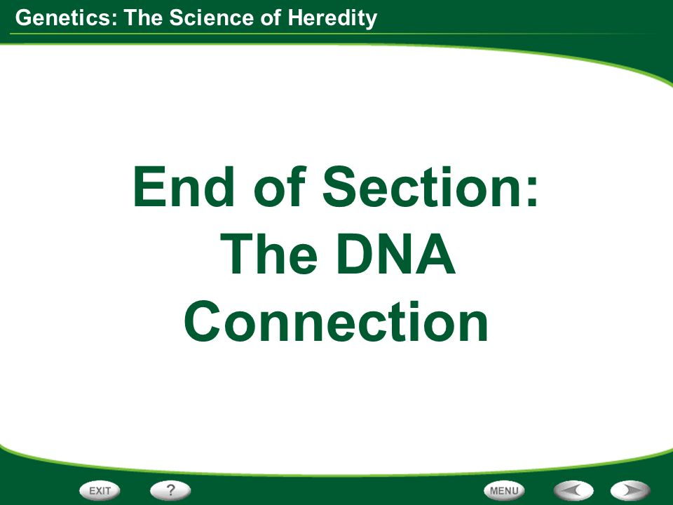 End of Section: The DNA Connection