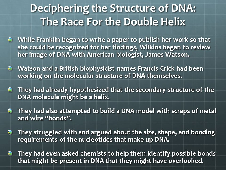 DNA Structure and Function Part 2 - ppt video online download