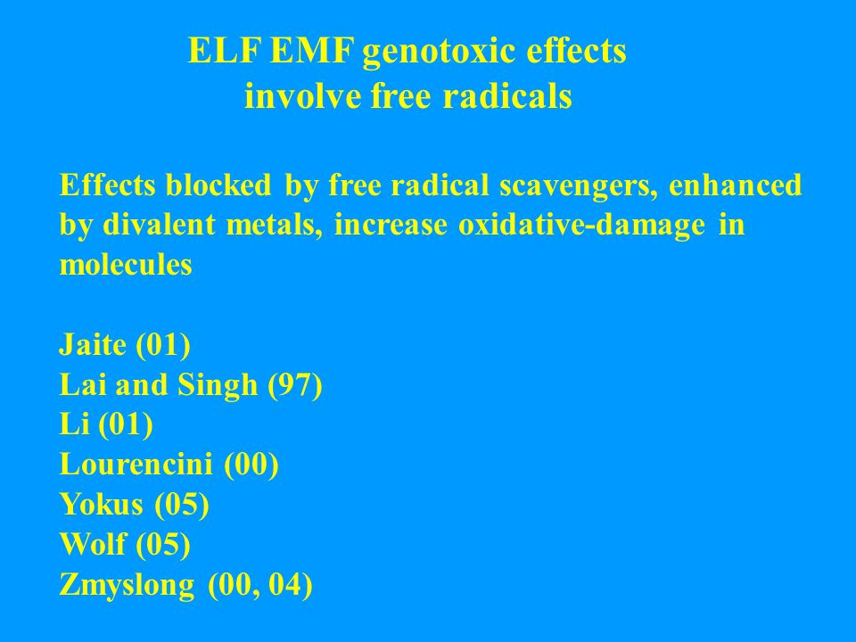 ELF EMF genotoxic effects involve free radicals